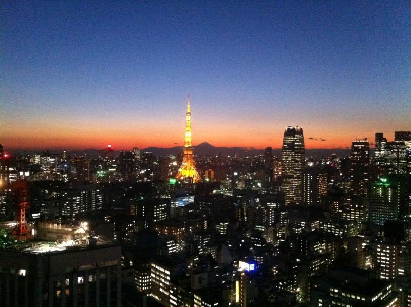MET Delegation in Tokio